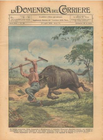"""1929 * Rivista Storica Originale """"La Domenica Del Corriere (N°29) - La Bufala Assassina"""""""