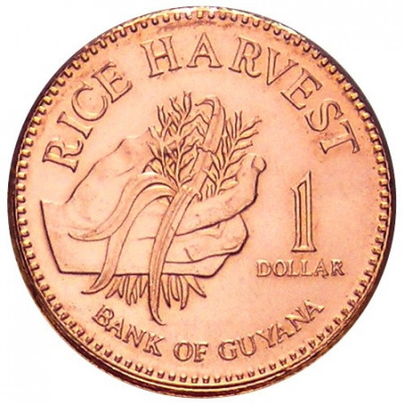 2008 * 1 Dollaro Guyana raccolta del riso