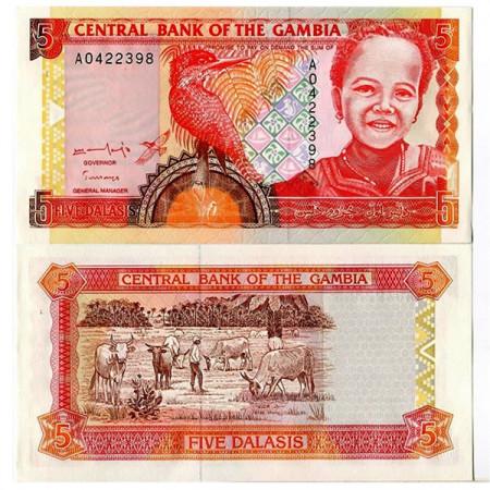 ND (1996) * Banconota Gambia 5 Dalasis (p16a) FDS