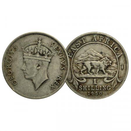 """1950 * 1 Shilling Africa Orientale Britannica - British East Africa """"Giorgio VI"""" (KM 31) BB"""