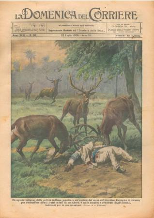 """1929 * Original Historical Magazine """"La Domenica Del Corriere (N°30) - Agente Indigeno Attaccato Dai Cervi"""""""