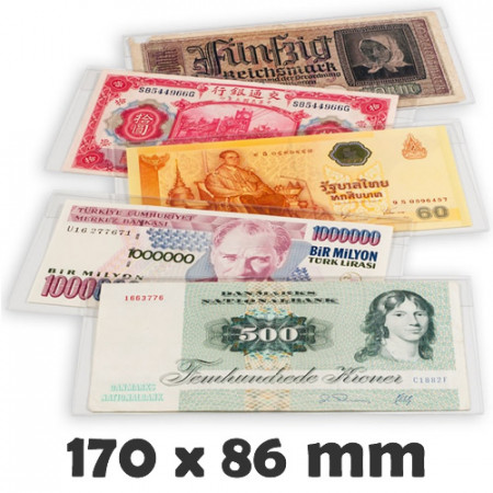 BASIC 176 Banknote Protective Sleeves (176 x 90 mm) * LIGHTHOUSE