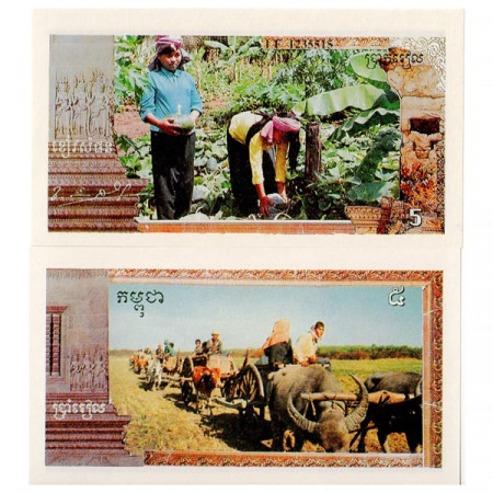 1993-99 * Reproduction Banknote Cambodia (Khmer Rouge) 5 Riels UNC