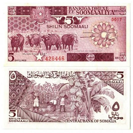 "1987 * Banknote Somalia 5 Shilin =5 Shillings ""Water Buffalos"" (p31c) UNC"