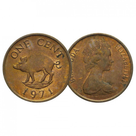 "1970-85 * 1 Cent Bermuda ""Wild Boar - 2nd Portrait"" (KM 15) VF"