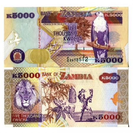 """1992 * Banknote Zambia 5000 Kwacha """"Fish Eagle"""" (p41a) UNC"""