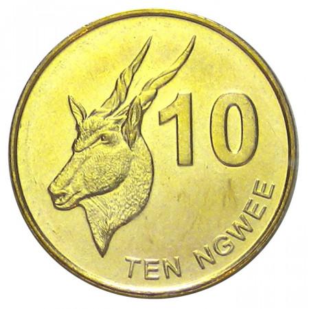 2012 * 10 ngwee Zambie Antilope