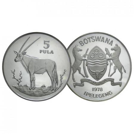 """1978 * 5 Pula Argent Botswana """"Oryx Gazelle"""" (KM 11a) BE"""