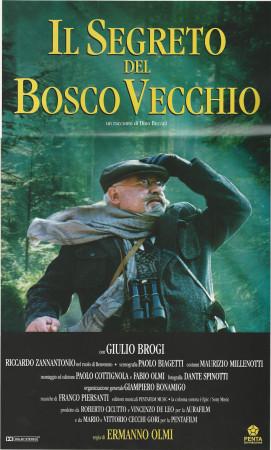 """1993 * Cartel Cinematográfico """"Il Segreto del Bosco Vecchio - Paolo Villaggio"""""""